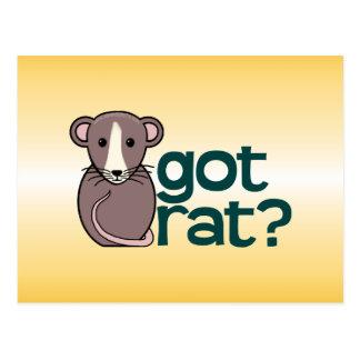 Got Rat? Postcard