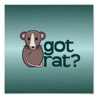 Got Rat? Poster