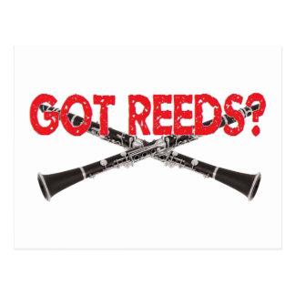 Got Reeds? Clarinet Style Postcard