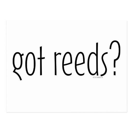 got reeds? post cards