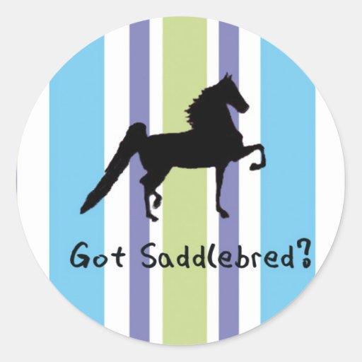 Got Saddlebred? Stickers