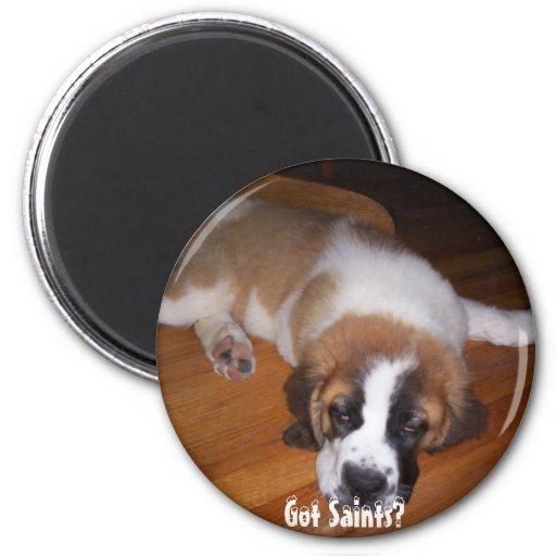 Got Saints? Fridge Magnets