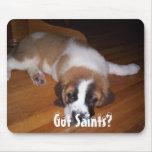 Got Saints? Mouse Pads