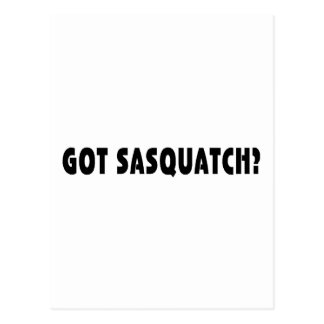 Got Sasquatch? Postcard