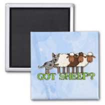 got sheep magnet