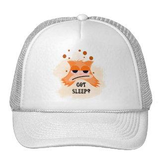 Got Sleep? Mesh Hat