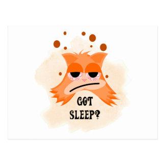 Got Sleep? Post Cards