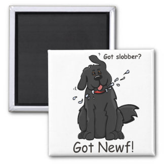 Got Slobber - Got Newf! 2 Inch Square Magnet