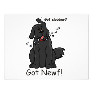 Got Slobber - Got Newf! Personalized Announcement