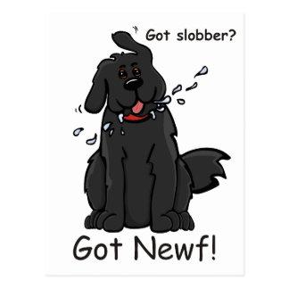 Got Slobber - Got Newf! Postcard