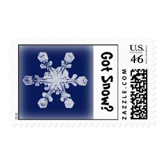 Got Snow? 1 Stamp stamp