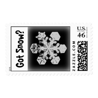 Got Snow? 3 Stamp stamp