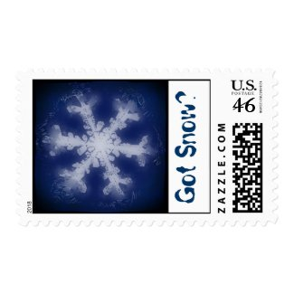 Got Snow? 6 Stamp stamp