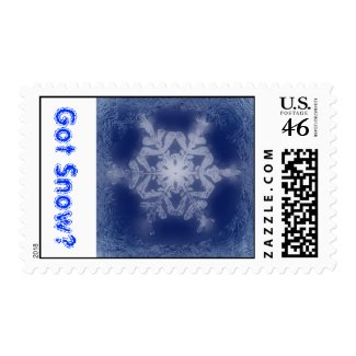 Got Snow? 7 Stamp stamp