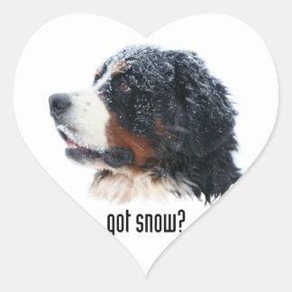 got snow? Bernese Mountain Dog Heart Sticker