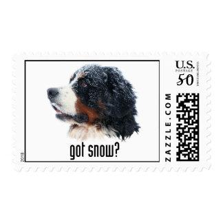 got snow? postage