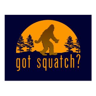 Got Squatch? Postcard