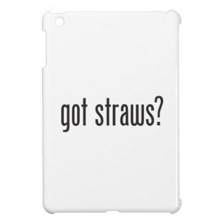 got straws case for the iPad mini