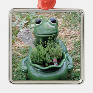 Got Thyme Frog Herbs Garden Photo Design Metal Ornament