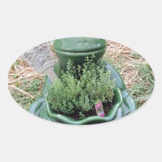 Got Thyme Frog Herbs Garden Photo Design Oval Stickers