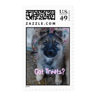 Got Treats II Stamp