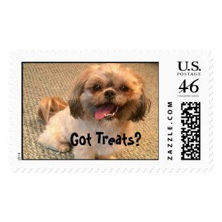 Got Treats? Postage Stamp