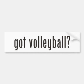 got volleyball? bumper sticker