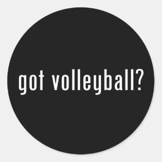 got volleyball? classic round sticker