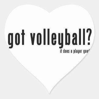Got Volleyball? Stickers