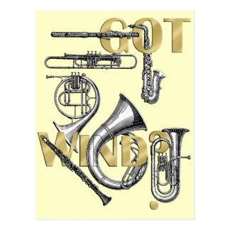 Got Wind Funny Wind Instrument players gifts Postcard