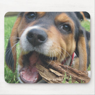 Got Wood? Chewing Beagle Puppy Mouse Pad