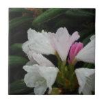 Gota de agua en los rododendros azulejo cerámica