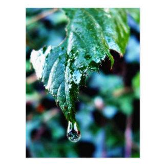 Gota de la lluvia postal