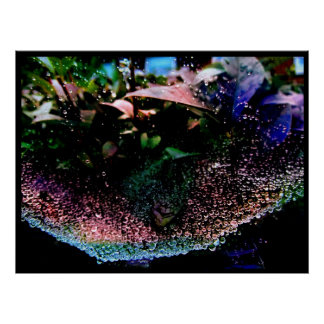 Gotas de agua coloreadas arco iris cogidas en el W Impresiones