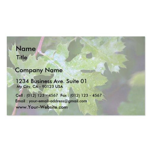 Gotas de agua de la hoja de las hojas plantilla de tarjeta de visita