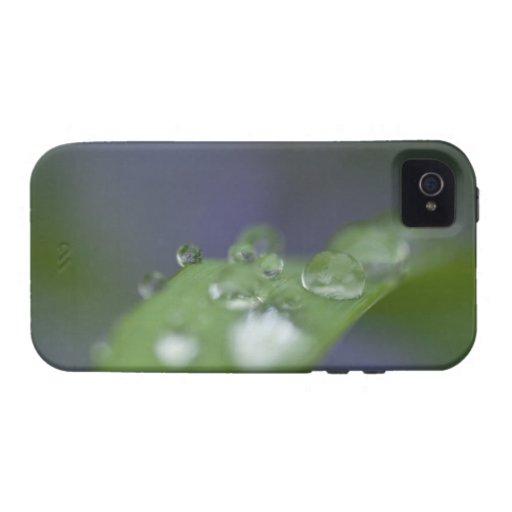 Gotas de agua del jardín iPhone 4/4S funda