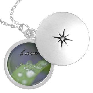 Gotas de agua del jardín; Personalizable Collar Personalizado