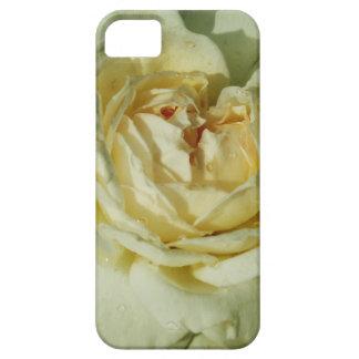Gotas de agua en el rosa blanco de Champán floral iPhone 5 Carcasa