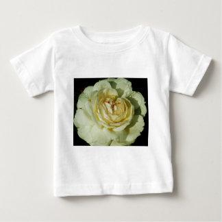 Gotas de agua en el rosa blanco de Champán floral Poleras