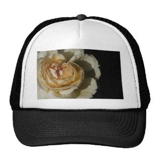 Gotas de agua en el rosa blanco poner crema de gorras