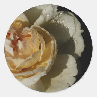 Gotas de agua en el rosa blanco poner crema de pegatina redonda