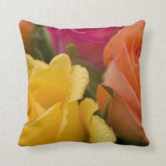 Gotas de agua en rosas amarillo-naranja y rosados cojín