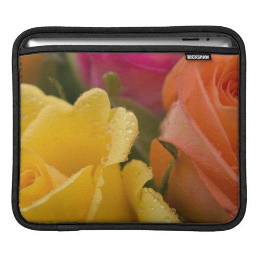 Gotas de agua en rosas amarillo-naranja y rosados funda para iPads