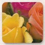 Gotas de agua en rosas amarillo-naranja y rosados posavasos de bebidas