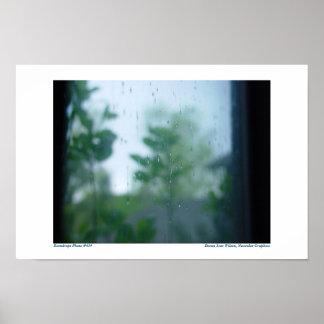 Gotas de agua en ventana: Foto #434 Impresiones