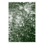 Gotas de agua fotografias
