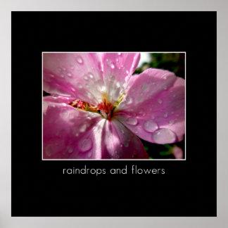 Gotas de agua y flores póster