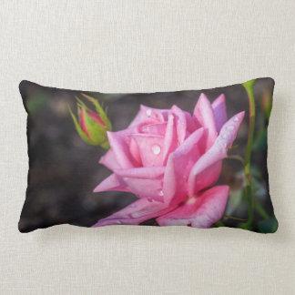 Gotas de lluvia en color de rosa rosado almohada