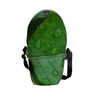 Gotas de lluvia en las hojas frecuencia intermedia bolsa messenger