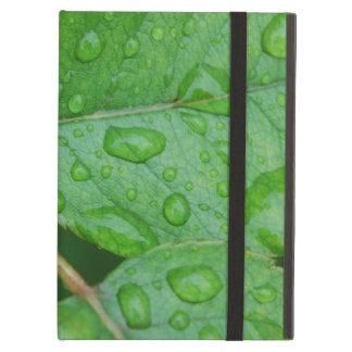Gotas de lluvia en las hojas frecuencia intermedia